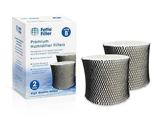 Fette Filter - Humidifier Filter Compatible with Holmes HWF64 - Filter B (2-Pack