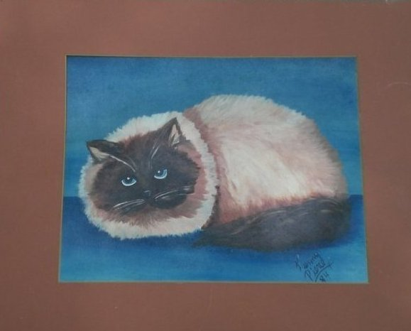 Unique Siamese Cat Picture Painted 13 year boy