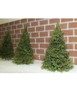 18 HO scale scratch built PINE TREES for model railroad - $22.50
