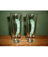 SENOR FROG'S Tall Shot Glasses - Playa Del Carmen, Mexico!!  - $9.99