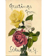 Greetings From Sidney New York Vintage 1906 Pos... - $3.00