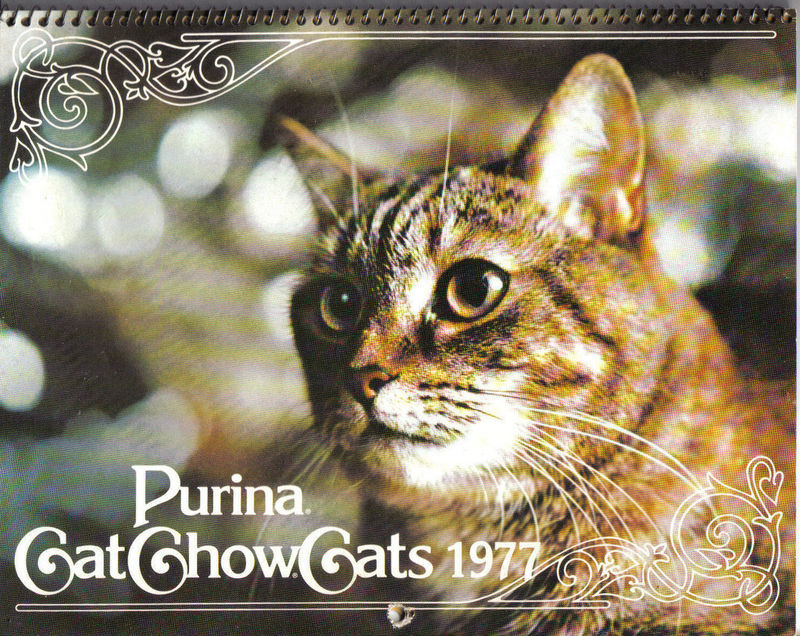 Purina Cat Chow Cats CALENDAR,1977;COLOR ILLUSTRATIONS READY TO FRAME;CAT LOVERS