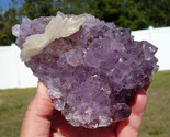 Calcite BOW TIE Points of Dog Tooth on Flower Amethyst Quartz Crystal Uruguay