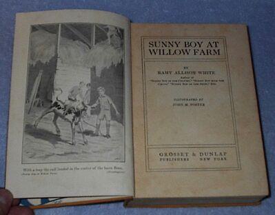 Sunny Boy at Willow Farm Ramy White 1929 Juvenile Series Book