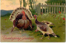 Thanksgiving Greetings P Finkenrath of Berlin 1908 Post Card - $6.00