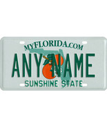 Custom Personalized Florida golf cart, mobility scooter license, go cart... - $12.99