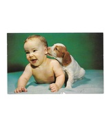 Puppy Nibbling Ear of Laughing Baby Tichnor Vintage Postcard - $4.99