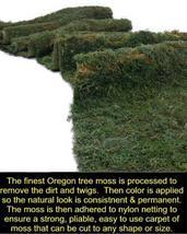 Carpet Moss, Moss Carpet, Display Moss 4 ft x 9 ft - $130.00