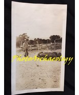 Antique Photograph Pig Farmer Feeding Black Pigs in Old New Mexico  - $5.40