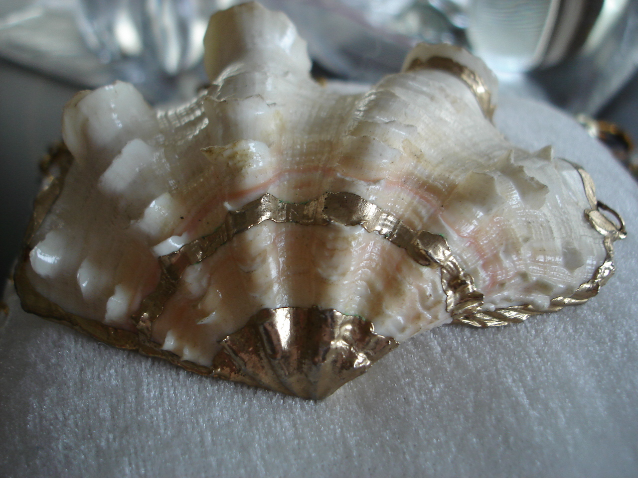 Vintage Large Real Clam Shell Seashell Pendant Necklace
