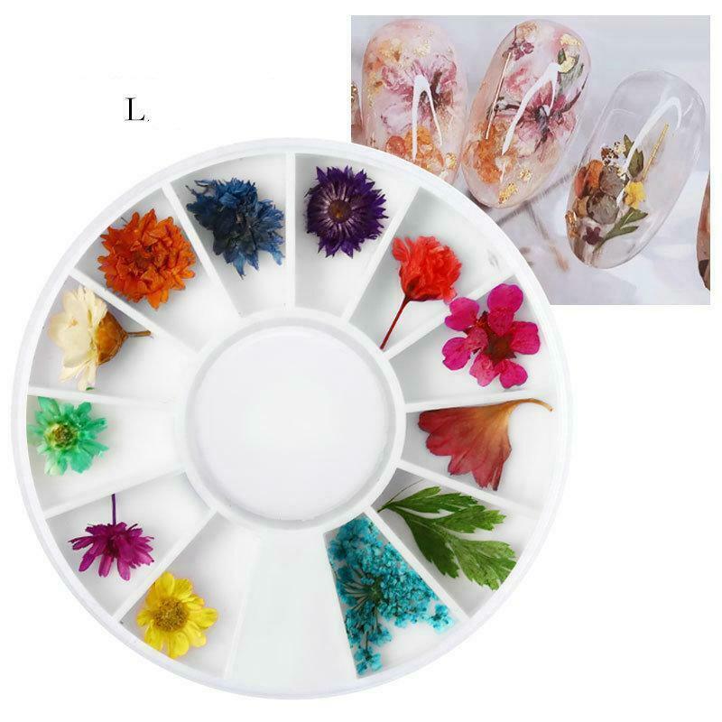 Dry Flowers Nail Art Decorations 3D Natural Daisy Sun Flower - 12 Colors / Box