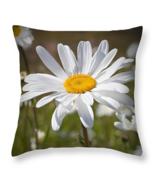 Simple Daisy, Throw Pillow, seat cushion, fine art, home decor, accent - $41.99 - $69.99
