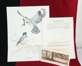 BELTED Kingfisher Print Plate #4 VALAN STIELER 1982 Mutual Security Life... - $24.70