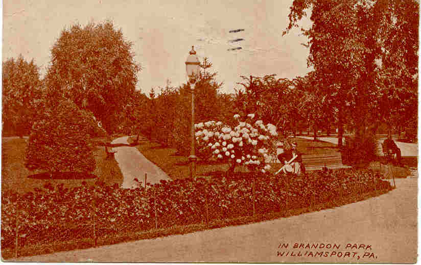 Brandon Park Williamsport Pennsylvania 1911 Post Card