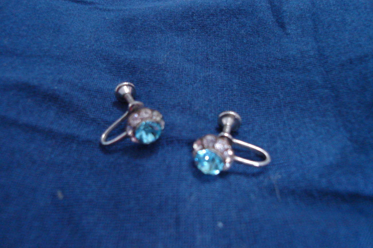 Smaller blue and white rhinestone earrings