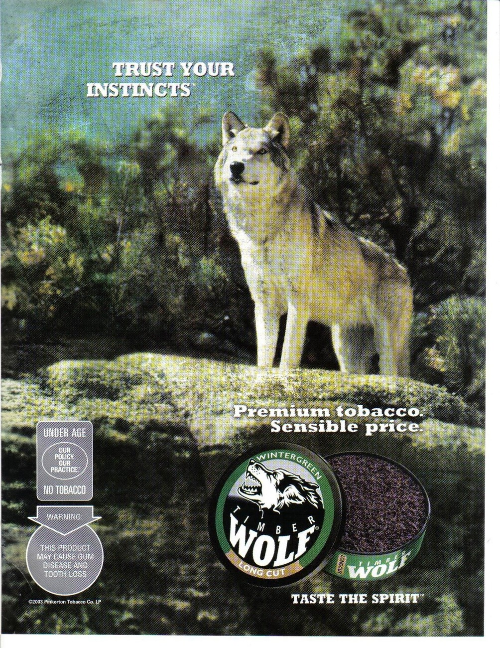Primary image for Wolf premium Tobacco Color Print Ad. Trust Your Instincts 2003 Very Good