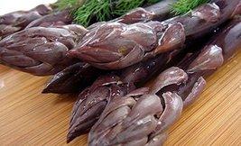 10 Roots of Pacific Purple Asparagus - The Best Purple Asparagus - $43.56