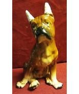 Vintage Boxer dog Figurines - Sad and all bandaged up - $28.45
