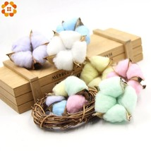 DIYHouse® 5PC/Set Colorful Natural Dried Cotton Flower Heads DIY Crafts ... - $6.43