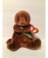 Ty Beanie Babies Plush Beanbag Seaweed the Otter Brown Green - $7.78