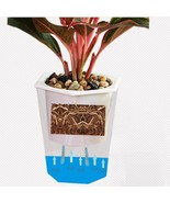 Transparent Flowerpot Self Watering Pot Plastic Rhombus Planter Home Gar... - $9.49+