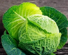 5 Variety Sweet Delicate Flavor Perfection Cabbage Savoy Fresh Seeds #TLM1 - $14.99+