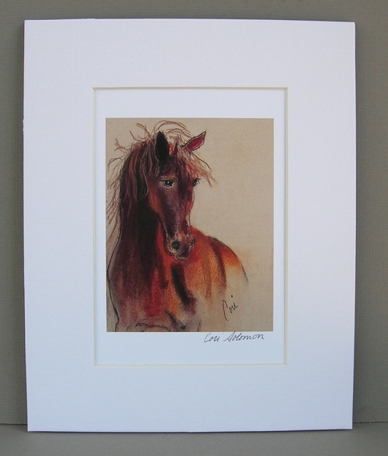 Horse Equine Art Print Signed Matted Solomon