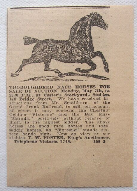 1917 Thoroughbred Race Horses Auction Foster's Yards Ad