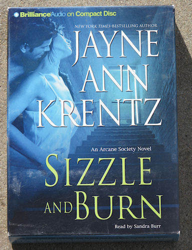 Primary image for Sizzle and Burn by Jayne Ann Krentz (Abridged Audiobook)