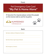 Pet Emergency Cards - Paws (Pack of 2) - $4.50