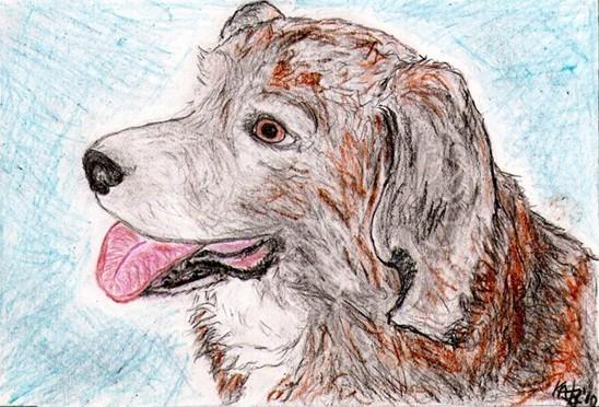 8x10 Custom Pet Dog Puppy Portraits Kat-Renee Kittel image 4