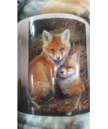 Fox Foxes in the Wild American Heritage Woodland Plush Raschel Throw bla... - $23.75