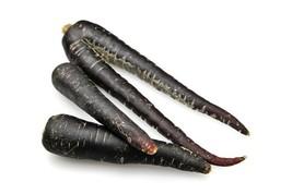 Carrot Black Nebula RARE Purple / Black Non GMO Heirloom Garden Vegetable Seeds - $2.96+