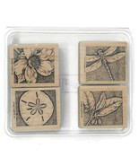 Stampin Up Nature's Wonders Rubber Stamps Sand Dollar Dragonfly Flower 4 Pack - $19.75