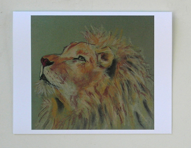 Lion Wildlife Art Note Cards Zoo Solomon