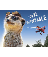 Funny Meerkat Aviator Encouragement Card: Unsto... - $4.25