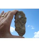 URANIUM ROCK:  JURASSIC TODILTO LIMESTONE 88k  5.4 OZ.  GRANTS NM   $30.... - $30.00
