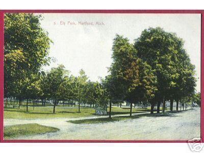 Hartfold Mi Ely Park Trees Street Vintage Mich PC