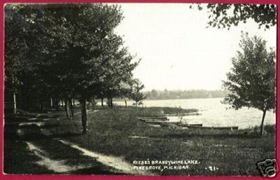 Primary image for Pine Grove MI Postcard Riese Brandywine Lake RPPC BJs