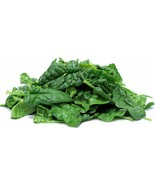 100 Bloomsdale Spinach Seeds 2019 (All Non-Gmo Heirloom Vegetable Seeds!) - $6.12