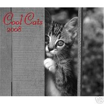 COOL CATS * 20 month * 2008 WALL CALENDAR NEW! SO CUTE - $7.99