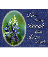 Bluebonnet Wall Decor Art Print - $12.50