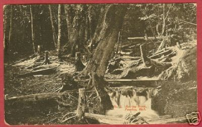 Petoskey MI Roaring Brook Weque Postcard BJs