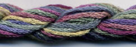 Airlie 095 Silk Floss Dinky Dyes 8m (8.7yds) cross stitch embroidery  - $3.60