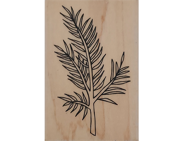 A Muse Art stamps Evergreen Branch Wood Mounted Rubber Stamp #2-4153J