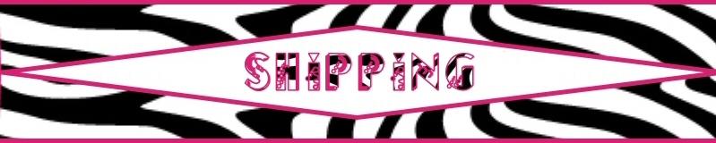 Minnie Mouse Zebra Personalized Birthday Invitation Photo You Print Digital File