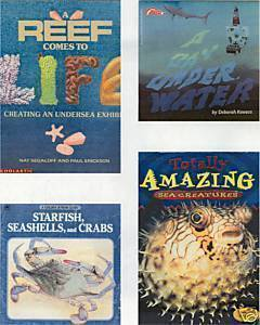 4)A DAY UNDERWATER:REEF;SEA CREATURES;STARFISH,CRABS,SE