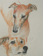 Greyhound Dog Art Sight Hound Pastel Drawing Solomon - $99.00