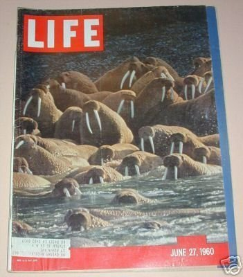 Primary image for LIFE MAGAZINE JUNE 27, 1960 ALASKAN WALRUS CROWD SHORE