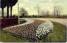 Highland Park Rochester New York Vintage 1911 Post Card - $5.00